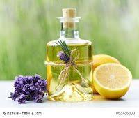 lavendel - Mit Lavendel das Ferien-Feeling so lange wie möglich behalten