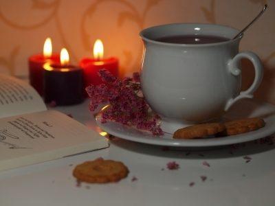 tee 2 - Linsen - Nahrungsmittel und Heilpflanze