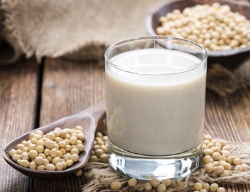 Soja-Milch selber machen / Homemade Soy Milk