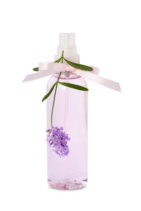 Fotolia 80489833 XS - Lavendel-Geschirrspülmittel selbst gemacht