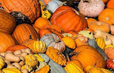 15253768497 e6e3206dbf z - Kürbis - gesund durch den Herbst