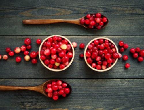 Cranberries – Das Superfood für die kalte Jahreszeit