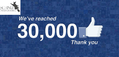fb - 30.000 Facebook Fans auf der Kräuterhexe!