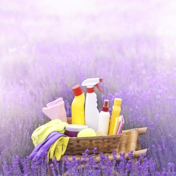 Cleaning products in a plastic bottles with lavender smell
