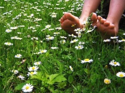 garten 1 - Wege sich mit dem Einklang der Natur eine richtige Auszeit zu nehmen – ein entspannter Sommertag