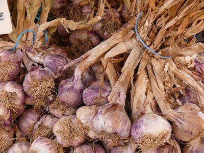 garlic - Mit Knoblauch nicht nur Vampire vertreiben