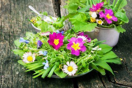 Frühlingssalat, Wildkräuter, essbare Blüten