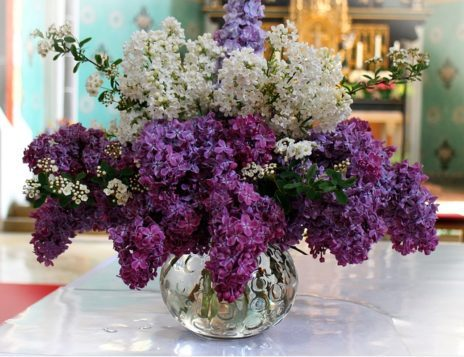 lilac bouquet 337160 640 e1528718752213 - Die Wirkung des Flieders
