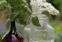 syrup 74239 640 256x174 - Desinfektionsmittel selbst gemacht / How to create your homemade germicide