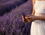 Von Lavendelessig bis hin zu Badesalzen und Ölen