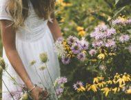 15. August – traditionell der Tag der Kräuterweihe