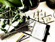 Vorbereitungen auf den Frühling | Jänner – Feber