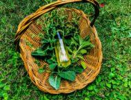 Erfrischungsspray selbst gemacht | Minze – Salbei – Aloe